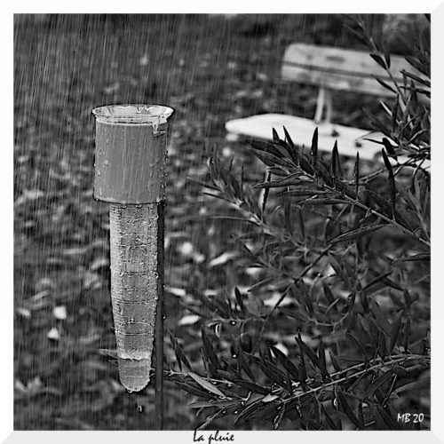 """Michel Bossu  """"Mesurons la pluie"""""""